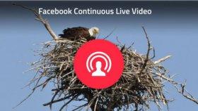 Facebook, in arrivo le dirette video non-stop fino a 24 ore